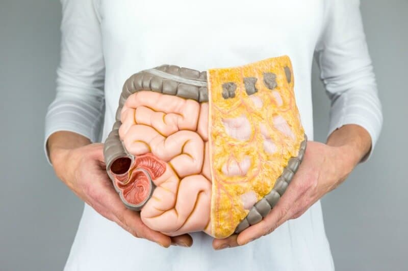 Colon hydrotherapy results in a more functional colon